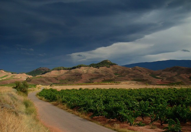 Camino Francés - Ominous clouds over the road to Azofra