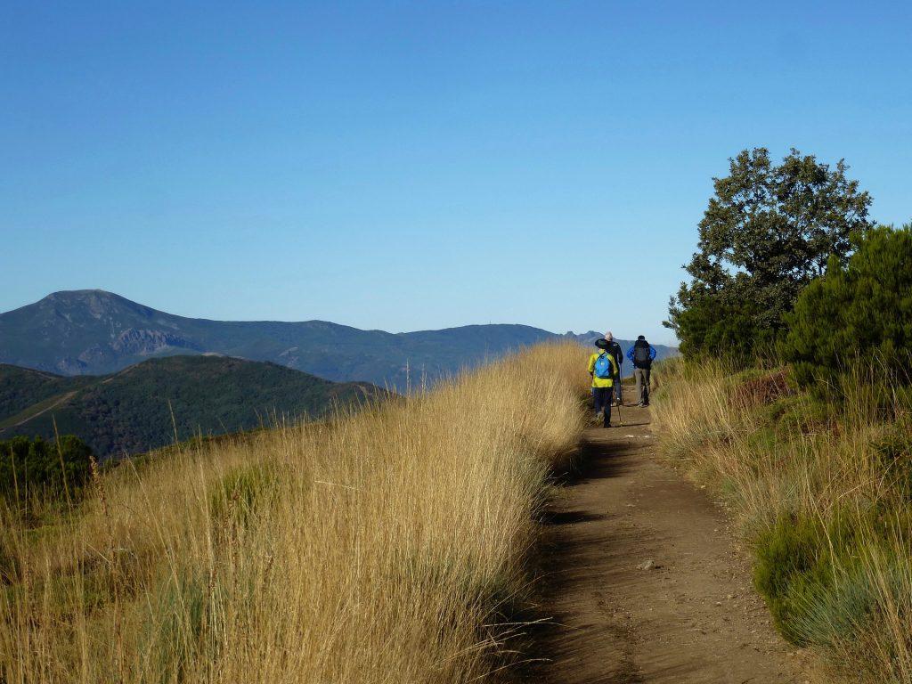 You will never feel alone on Camino de Santiago.