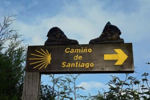 Camino Francés - On the way to Monte do Gozo